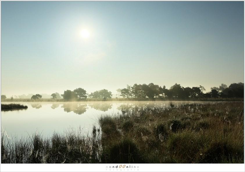 De zon schijnt fel, de mist verdwijnt; de dag is aangebroken