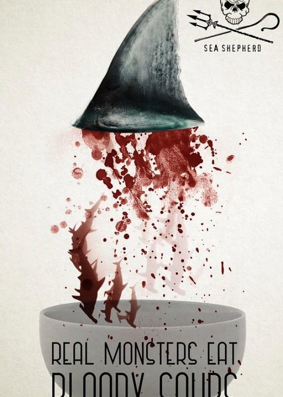 Sea Shepherd - Shark 3