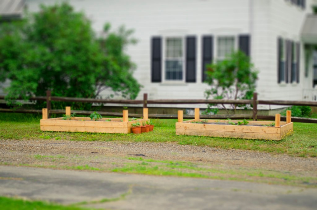 garden beds tilt shift