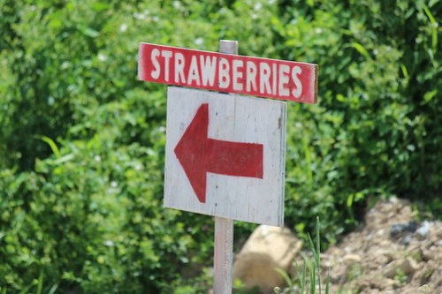 Strawberries Sign