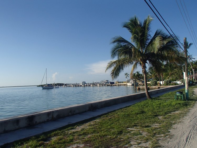 A view of the yacht club