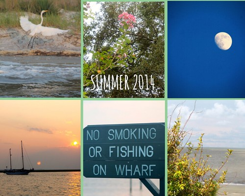 Summer 2014 Collage