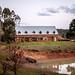 Stonebarn Lodge and Truffle farm