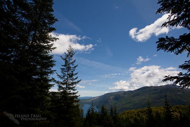 Mt Horne - 2014-06-07-6168