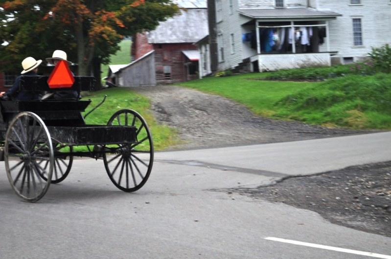 Amish Boys Drive a Horse-Drawn Buggy Along New York's Amish Trail