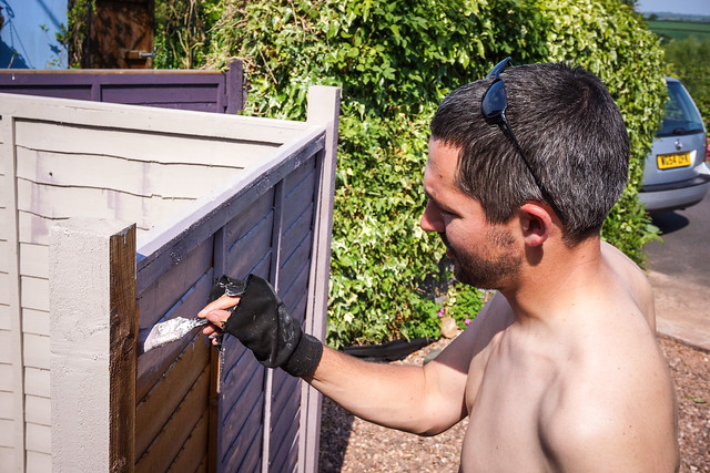 Fence painting in Topsham