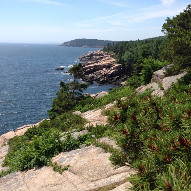 Hiking on Ocean Trail. #acadianationalpark #maine