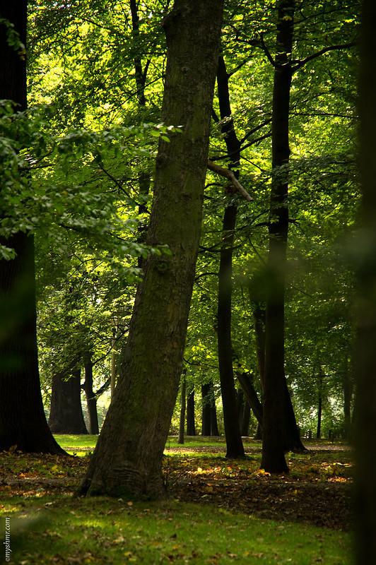 Clara-Zetkin-Park • Leipzig