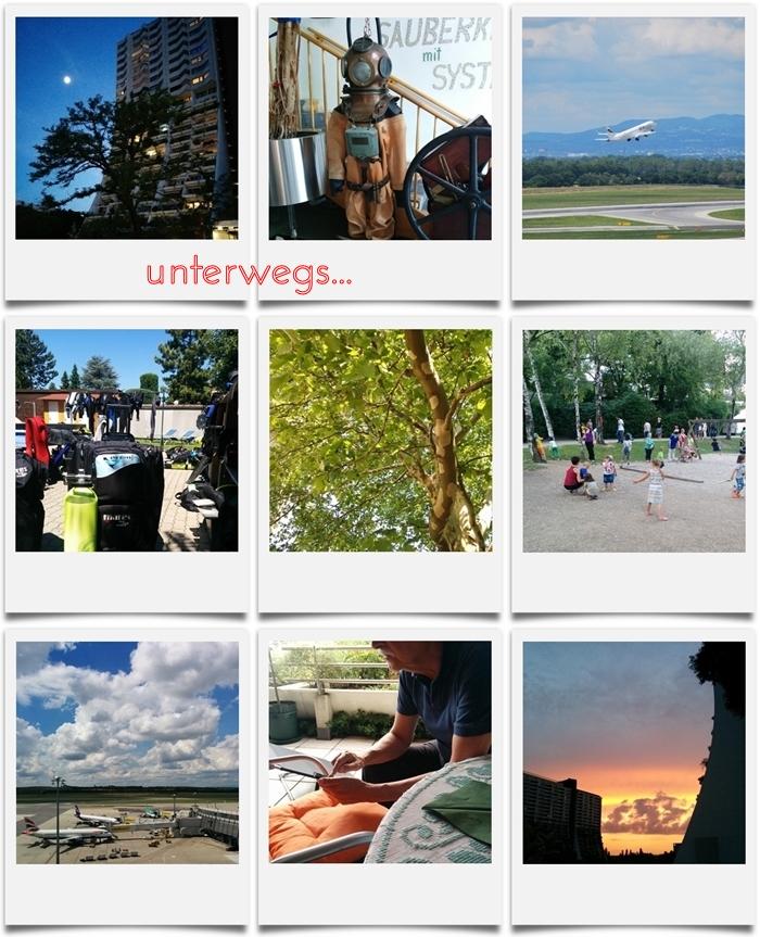 wohnpark alterlaa | seastar | neufeldersee | schottenheuriger | sommerfest | flughafen wien schwechat