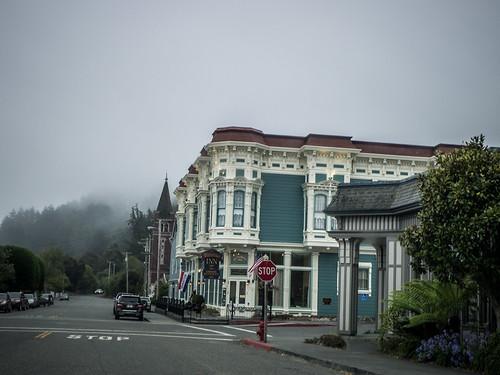 Coastal Redwoods and Fog-114