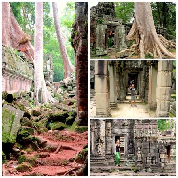 Ta Phrom templos con raices