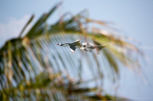 USAF Thunderbirds passing through the palms
