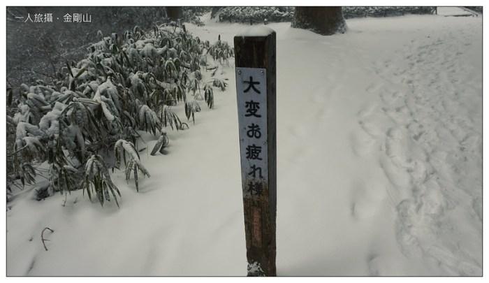 金剛山 23
