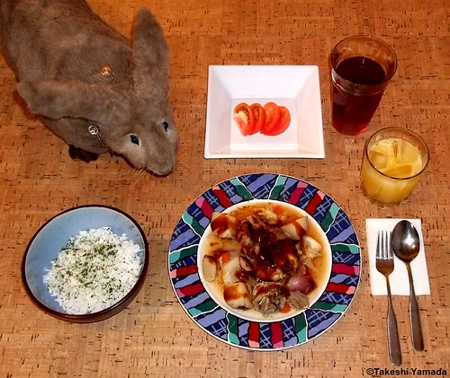 Dining with Seara (sea rabbit).  Photograph by Dr. Takeshi Yamada.  20120225 054 Chicken and Potatoes. SRwParsley Frakes. Sliced T. OJ BT