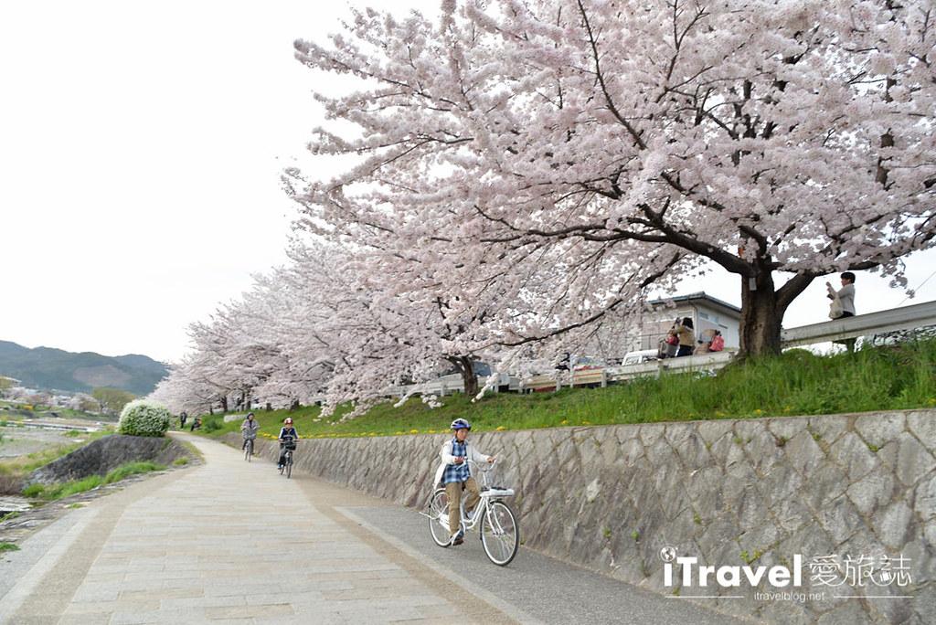 京都脚踏车出租 Rent a cycle EMUSICA (40)