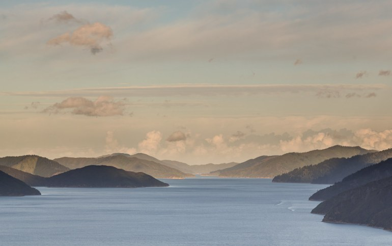 Picton Harbor from Queen Charlotte Track