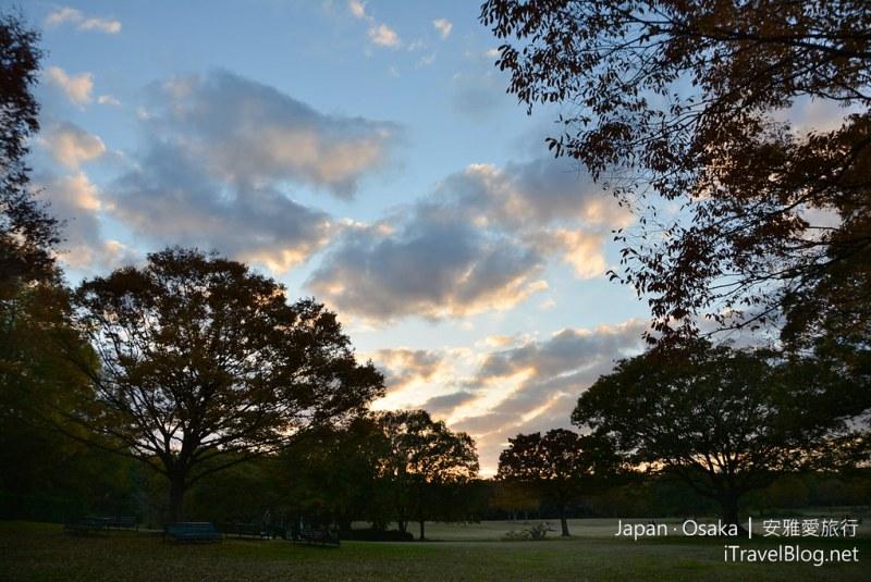 大阪赏枫 万博纪念公园 32