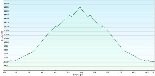 Bison Mountain Elevation Map