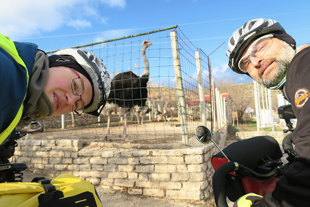 Down the Velebit and meeting with the ostrich