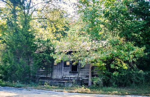 Union County Ramble-17