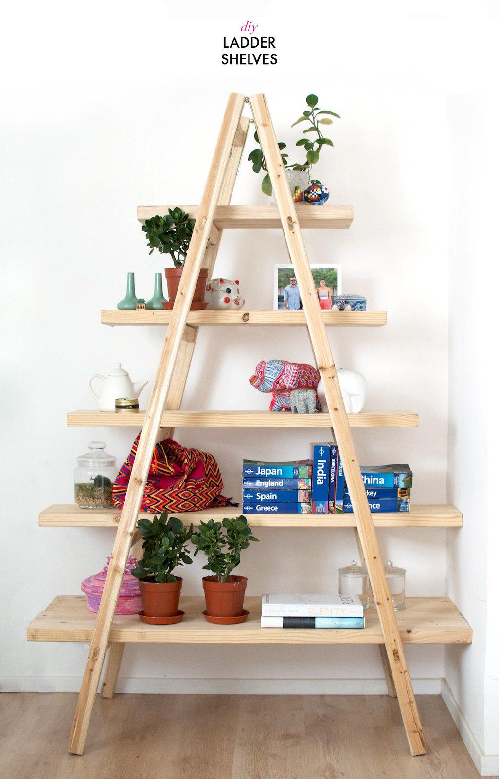Make a quick set of shelves using a ladder www.apairandasparediy.com - Geneva Vanderzeil apairandasparediy.com