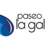 Logo PLG Horizontal.