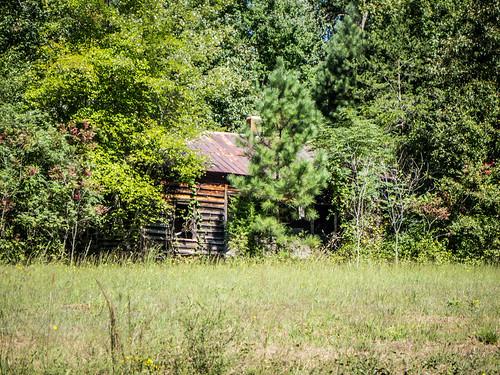 Oak Grave School