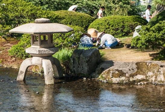 Kenroku-en en Kanazawa-16
