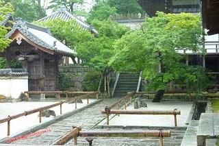 P1060455 Komyozen ji (Dazaifu) 12-07-2010 copia