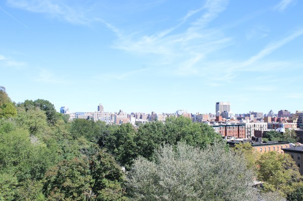 Morningside Park in September