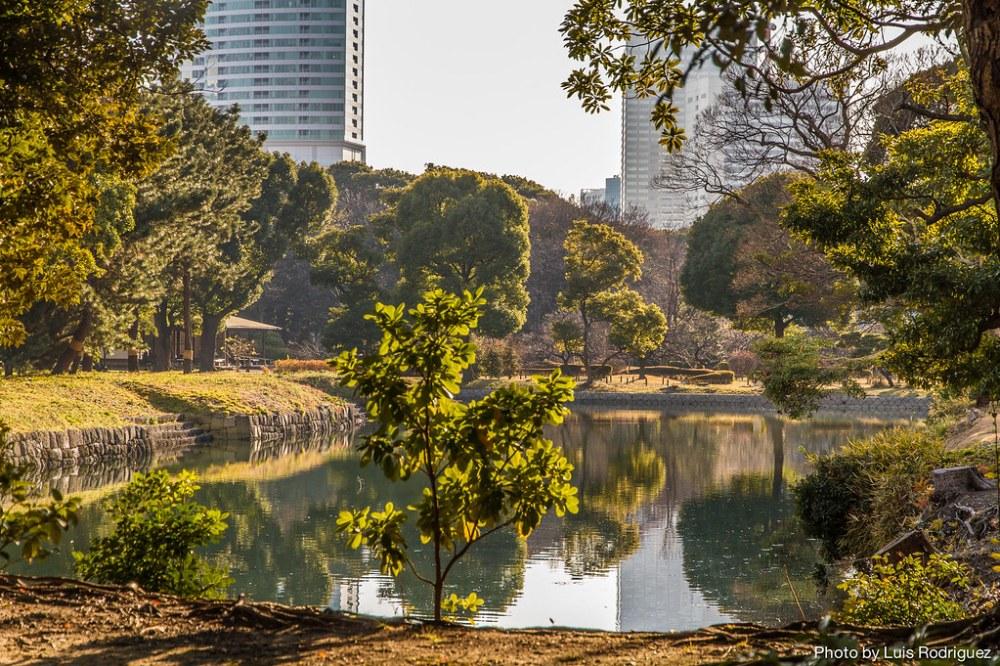 Hama-Rikyu Gardens-9