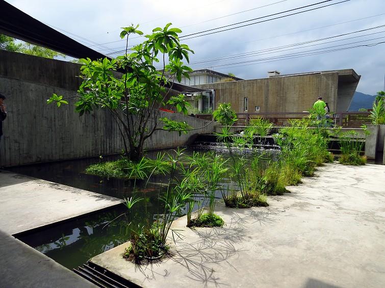 勝洋水草餐廳 (9)