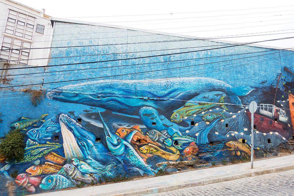Street Art Valparaiso 08