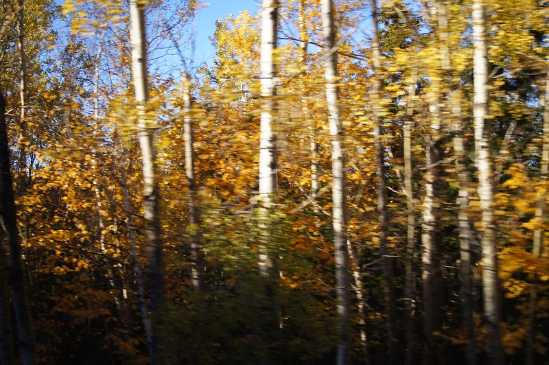 Gaspesie Autumn 2014