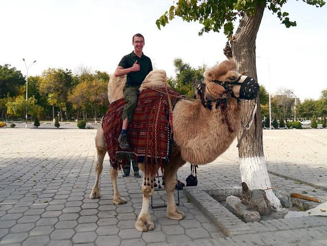 8) Camel!
