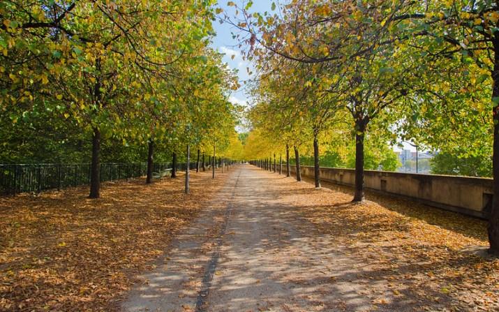 Parc de Berc