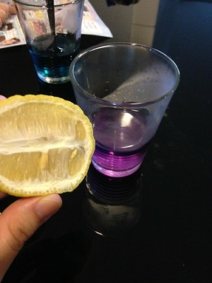 Science experiments: red cabbage pH indicator