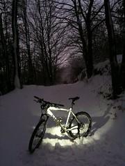 Cube im Schnee