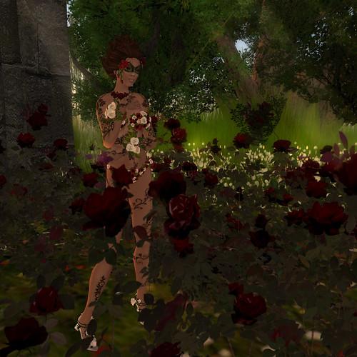 Flora - Roses I