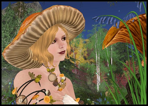 The Toadstool Fairy