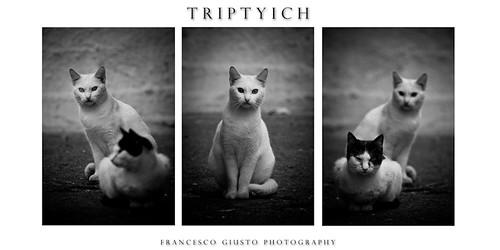 Triptyich