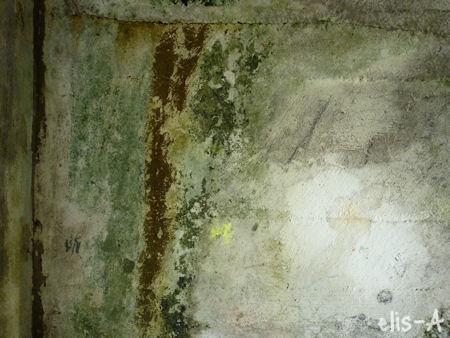 grønn5