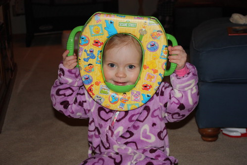 New Potty Seat