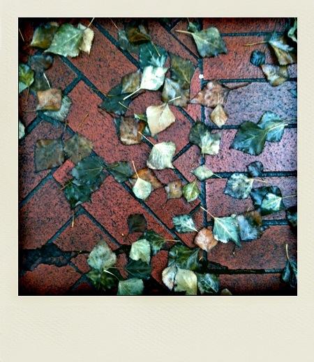 L'autunno nel cuore