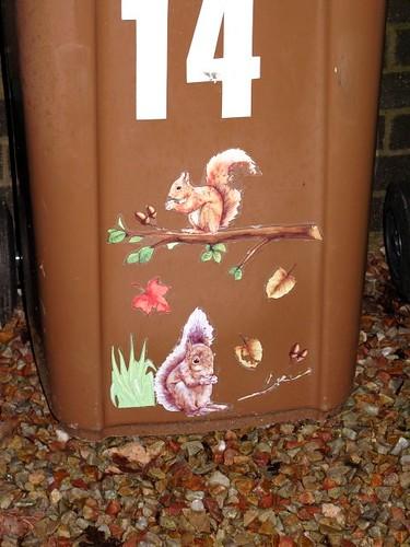 Bin squirrels