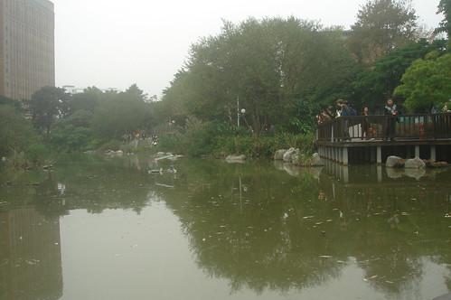 瑠公圳遺址1