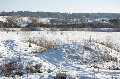 Campos nevados