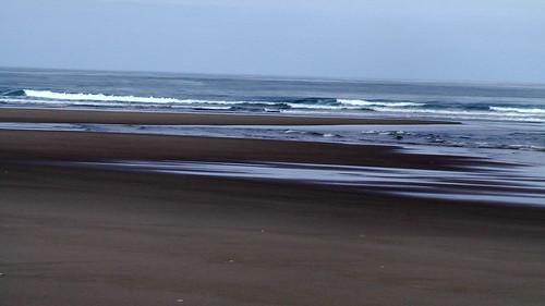 Oregon Dunes - John Dellenback Trail