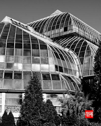 D80-CHI_LP-Conservatory02-2010_10-16B