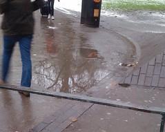 puddle100106web.gif